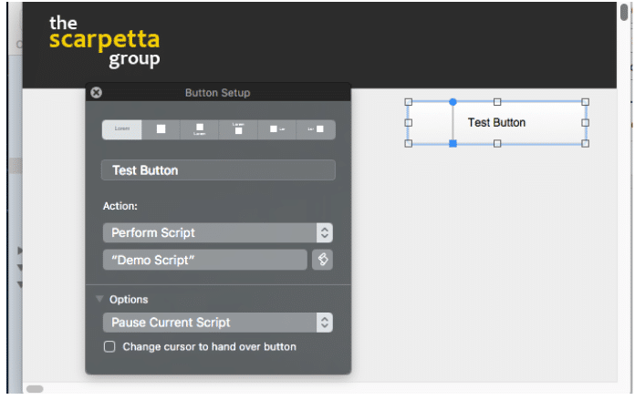 View and Set Script Parameters in the Button Setup in FileMaker