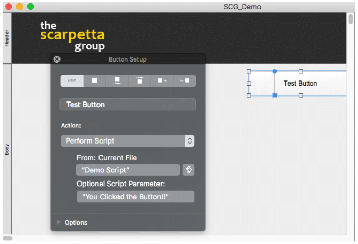 View and Set your Script Parameters in the Button Setup in FileMaker 17 3
