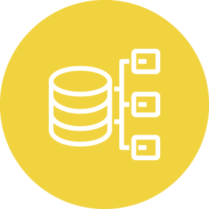 API Developer icon